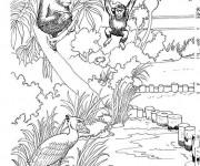 Coloriage et dessins gratuit Espace de singes au Zoo à imprimer