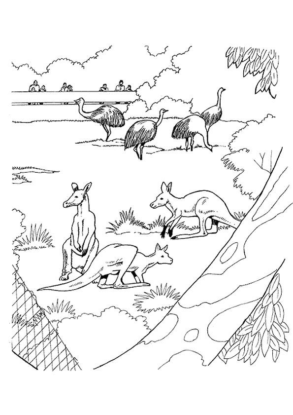 Coloriage et dessins gratuits Le jardin Zoo à imprimer