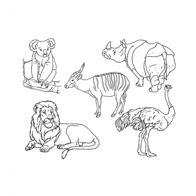 Coloriage les animaux en noir et blanc dessin gratuit - Dessin noir et blanc animaux ...