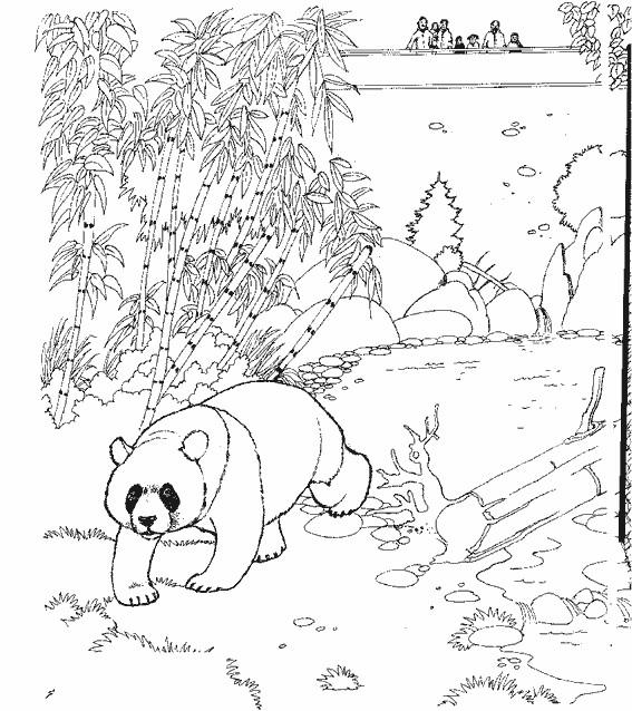 Coloriage et dessins gratuits Panda au Zoo à imprimer