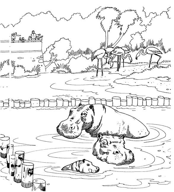 Coloriage et dessins gratuits Un parc zoologique à imprimer
