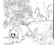 Coloriage dessin  Zoo 10