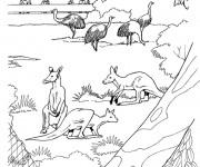 Coloriage dessin  Zoo 20