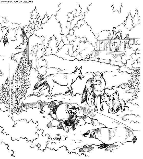 Coloriage et dessins gratuits Zoo à télécharger à imprimer