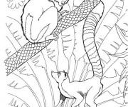 Coloriage et dessins gratuit Zoo pour enfant à imprimer