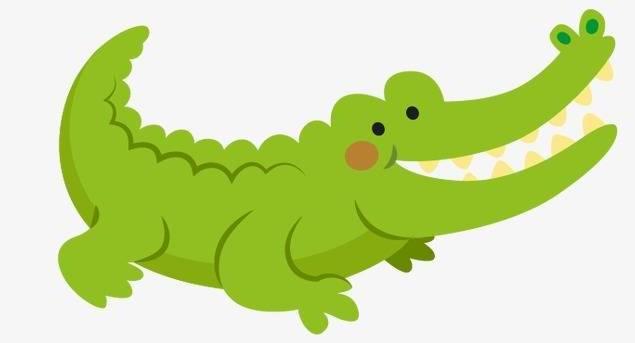 Les Crocodiles: ce qu'il faut savoir sur ces animaux monstrueux avant de les rencontrer face à face: