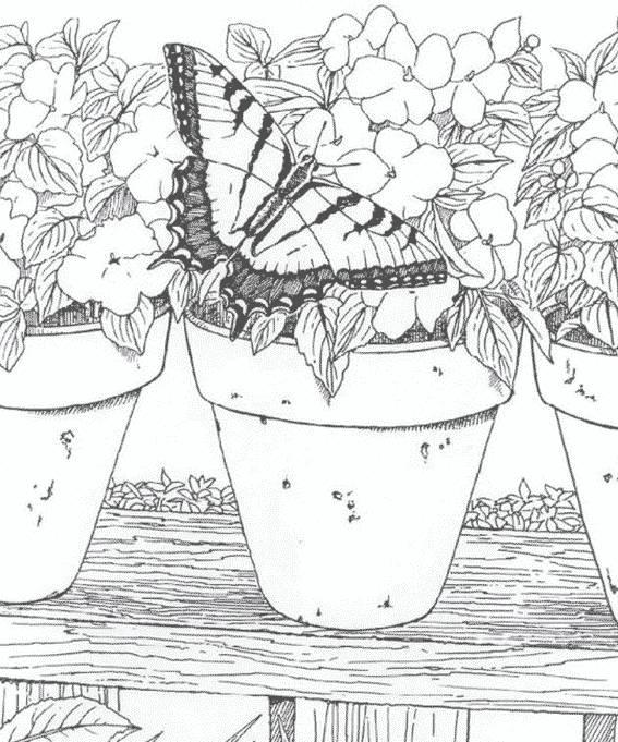 Coloriage et dessins gratuits Adulte fleurs et papillon à imprimer
