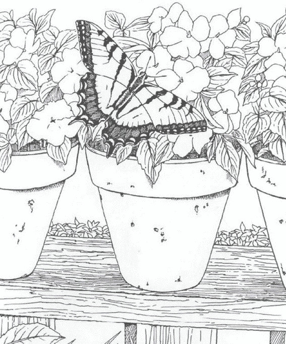 Coloriage adulte paysage dessin gratuit imprimer - Mandala paysage ...