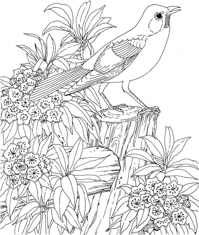 Coloriage et dessins gratuits paysage de Fleur et animaux adultes à imprimer