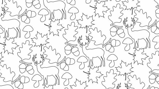 Coloriage et dessins gratuits Anti-Stress cerf et glands à imprimer