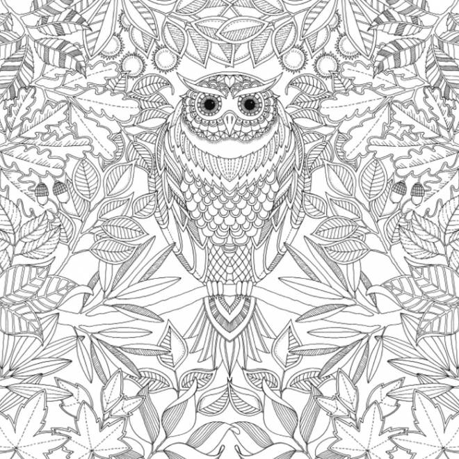 Coloriage et dessins gratuits Art Thérapie Anti-Stress avec hibou à imprimer