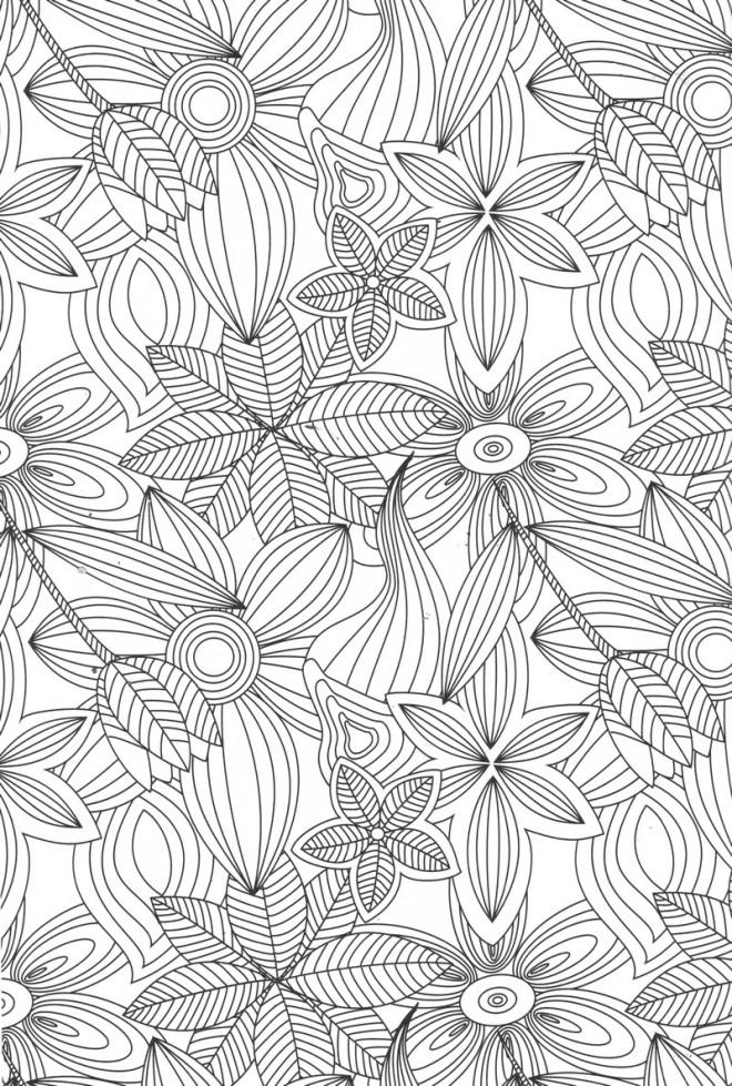 Coloriage Fleurs Et Feuilles Anti Stress Dessin Gratuit A Imprimer