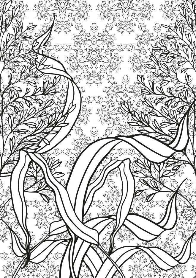 Coloriage et dessins gratuits Nature Anti-Stress à imprimer