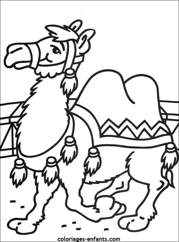 Coloriage et dessins gratuits Chameau de Cirque à imprimer