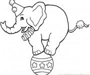 Coloriage Cirque Éléphant sur Le Ballon