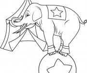 Coloriage Éléphant devant Le Chapiteau de Cirque