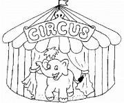Coloriage Un Éléphant qui sort de Chapiteau du Cirque
