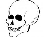 Coloriage Crâne à colorier