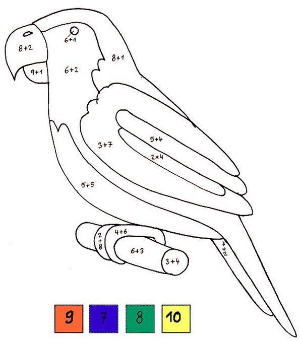 Coloriage et dessins gratuits Perroquet et Équations en couleur à imprimer