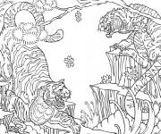 Coloriage et dessins gratuit Conflit des Tigres à imprimer