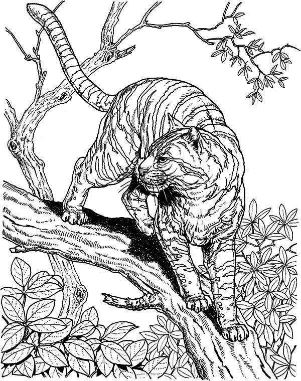 Coloriage Difficile Animaux pour adulte dessin gratuit à imprimer