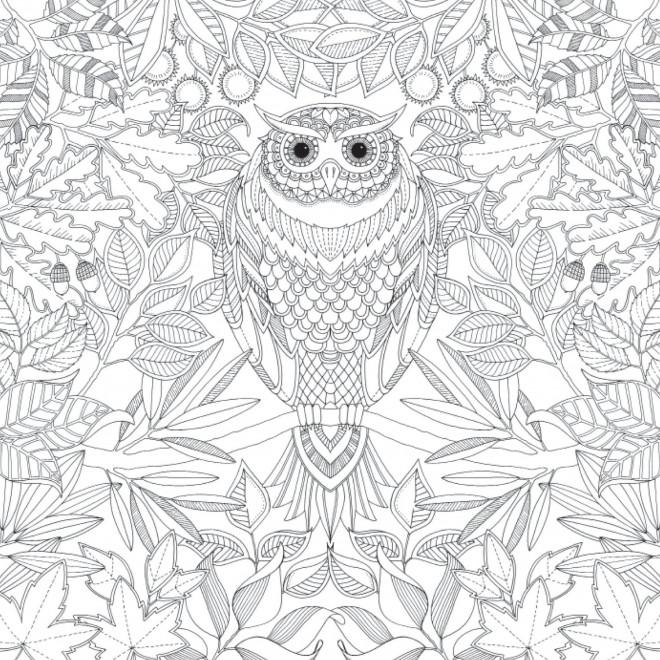 Coloriage et dessins gratuits Difficile Hibou artistique à imprimer