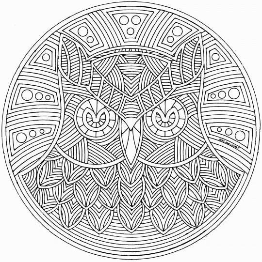 Coloriage et dessins gratuits Difficile Mandala Hibou à imprimer