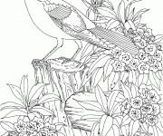 Coloriage et dessins gratuit Difficile Oiseau stylisé à imprimer