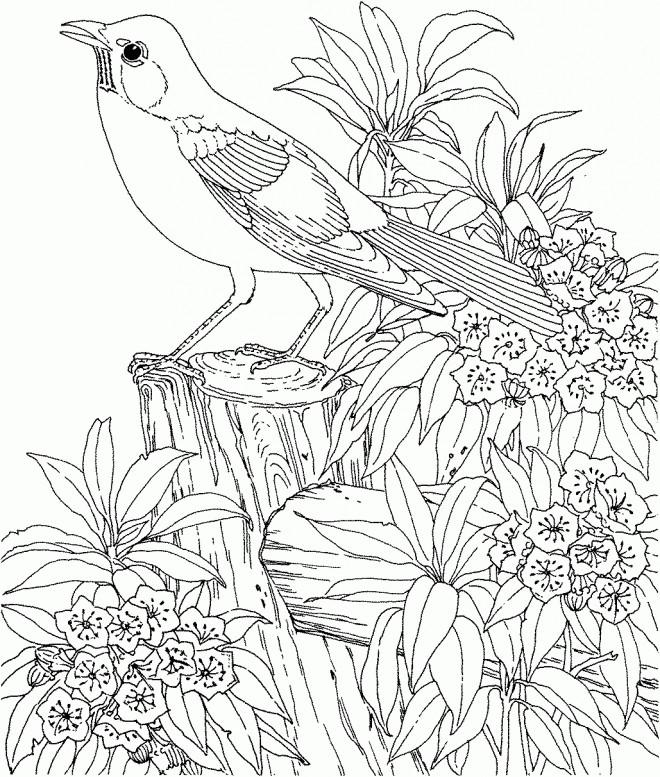 Coloriage Difficile Oiseau stylisé dessin gratuit à imprimer