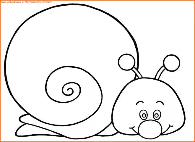 Coloriage et dessins gratuits Facile Escargot à imprimer