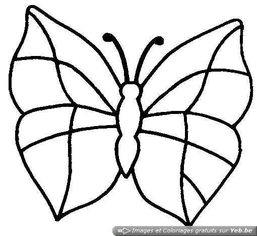 coloriage papillon facile faire dessin gratuit imprimer. Black Bedroom Furniture Sets. Home Design Ideas