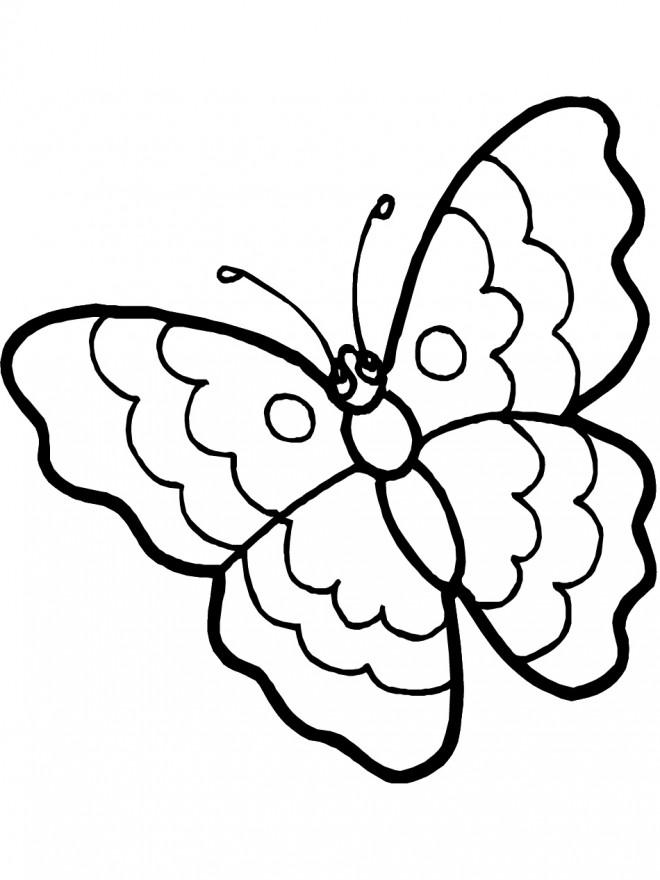 Coloriage Papillon stylisé Facile dessin gratuit à imprimer