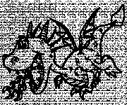 Coloriage Dragon de Feu humoristique