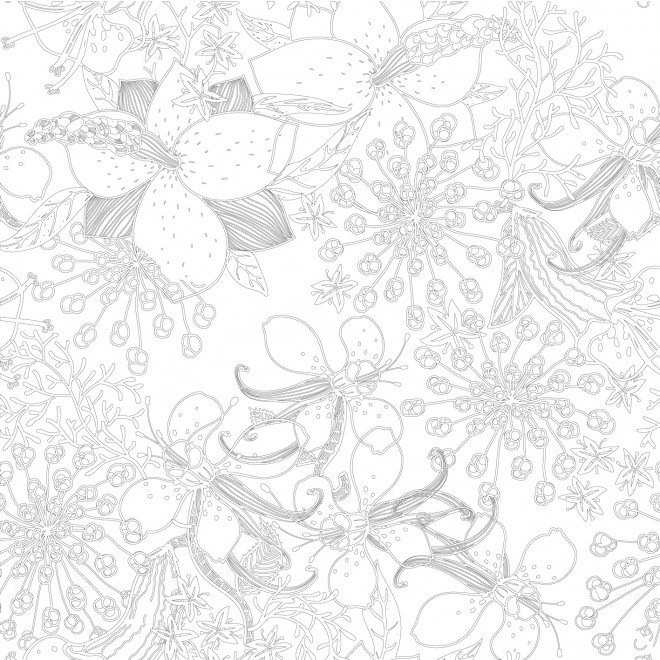 Coloriage et dessins gratuits Inspiration Zen Difficile à imprimer