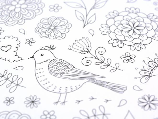 Coloriage et dessins gratuits Oiseau Anti-Stress à imprimer