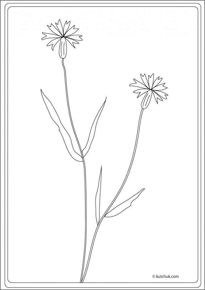Coloriage et dessins gratuits Klimt Joli Fleur à imprimer