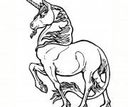 Coloriage dessin  Licorne 3