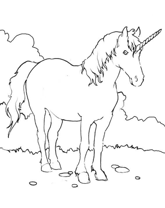 Coloriage et dessins gratuits Licorne dans La Nature à imprimer