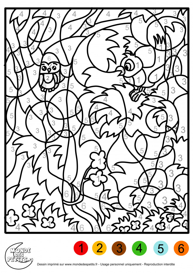 Coloriage Magique Pour Adulte Dessin Gratuit A Imprimer
