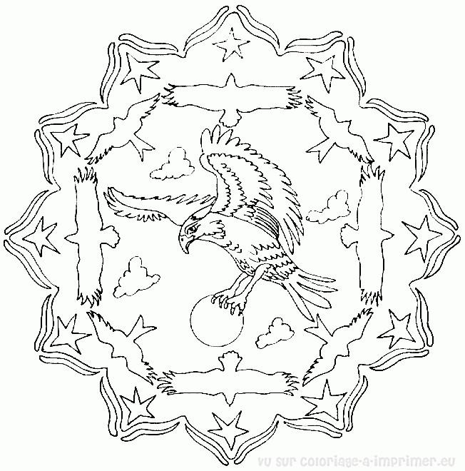 Coloriage Mandala Aigle Dessin Gratuit A Imprimer