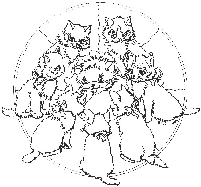 Coloriage et dessins gratuits Mandala Chat à imprimer