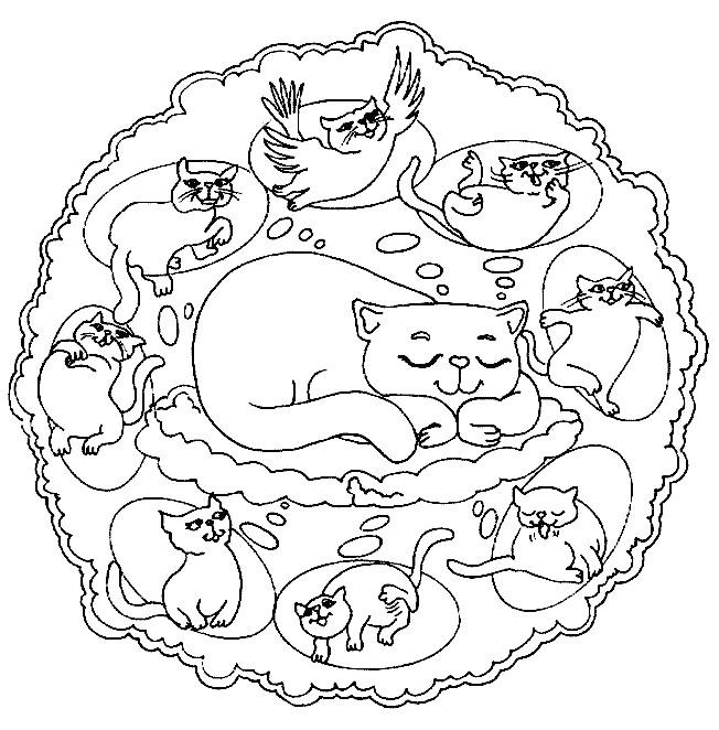 Coloriage Mandala Chat En Couleur Dessin Gratuit A Imprimer