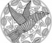 Coloriage et dessins gratuit Mandala Colibris à imprimer