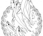 Coloriage et dessins gratuit Mandala Dauphins à imprimer