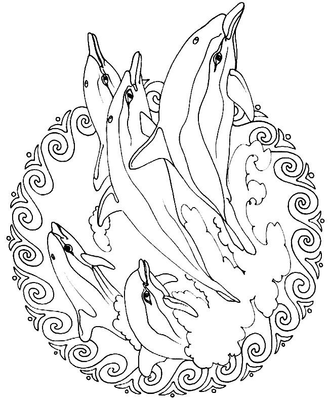 Coloriage et dessins gratuits Mandala Dauphins à imprimer