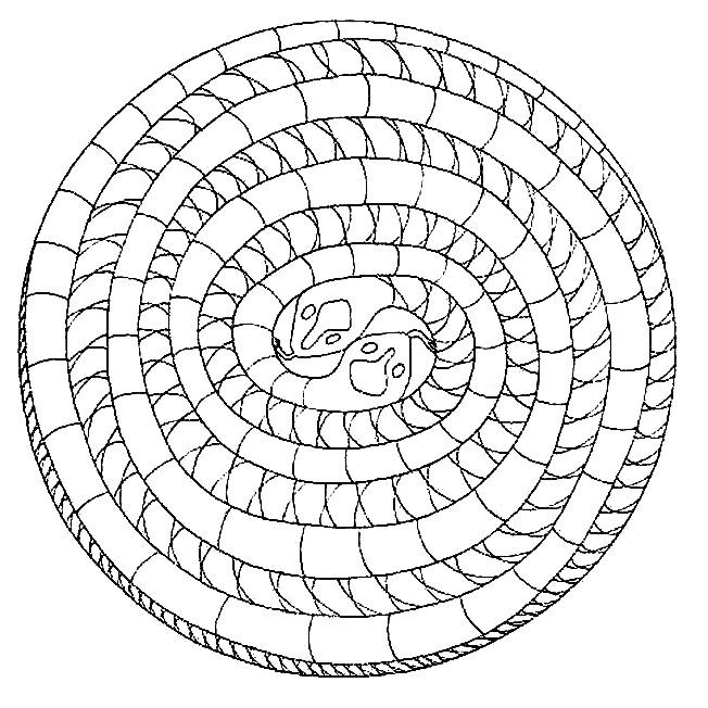Coloriage et dessins gratuits Mandala Serpent à colorier à imprimer