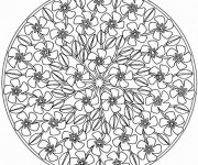 Coloriage dessin  Mandala Difficile 18