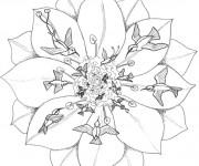 Coloriage et dessins gratuit Mandala Fleurs et Oiseaux à imprimer