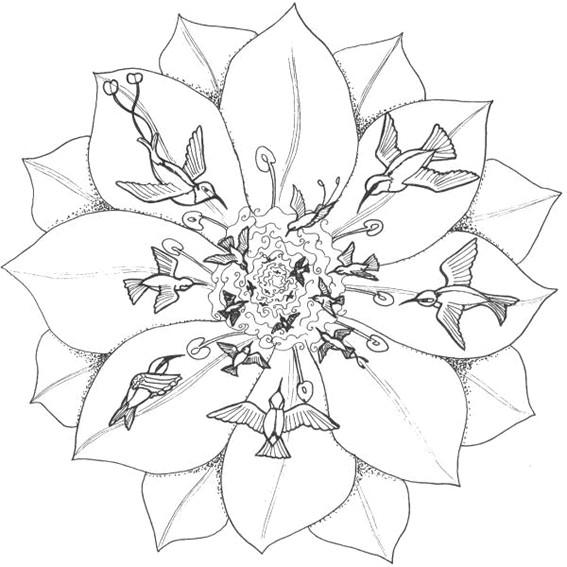 Coloriage et dessins gratuits Mandala Fleurs et Oiseaux à imprimer