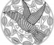 Coloriage Mandala Oiseau